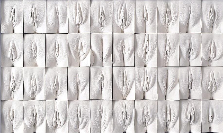 """Great Wall of Vagina"" de Jamie Mc Cartney"